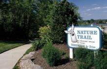 nature-trail